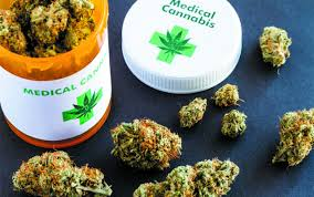 THE IMPORTANCE OF CHOOSING THE RIGHT MEDICAL CANNABIS STRAIN
